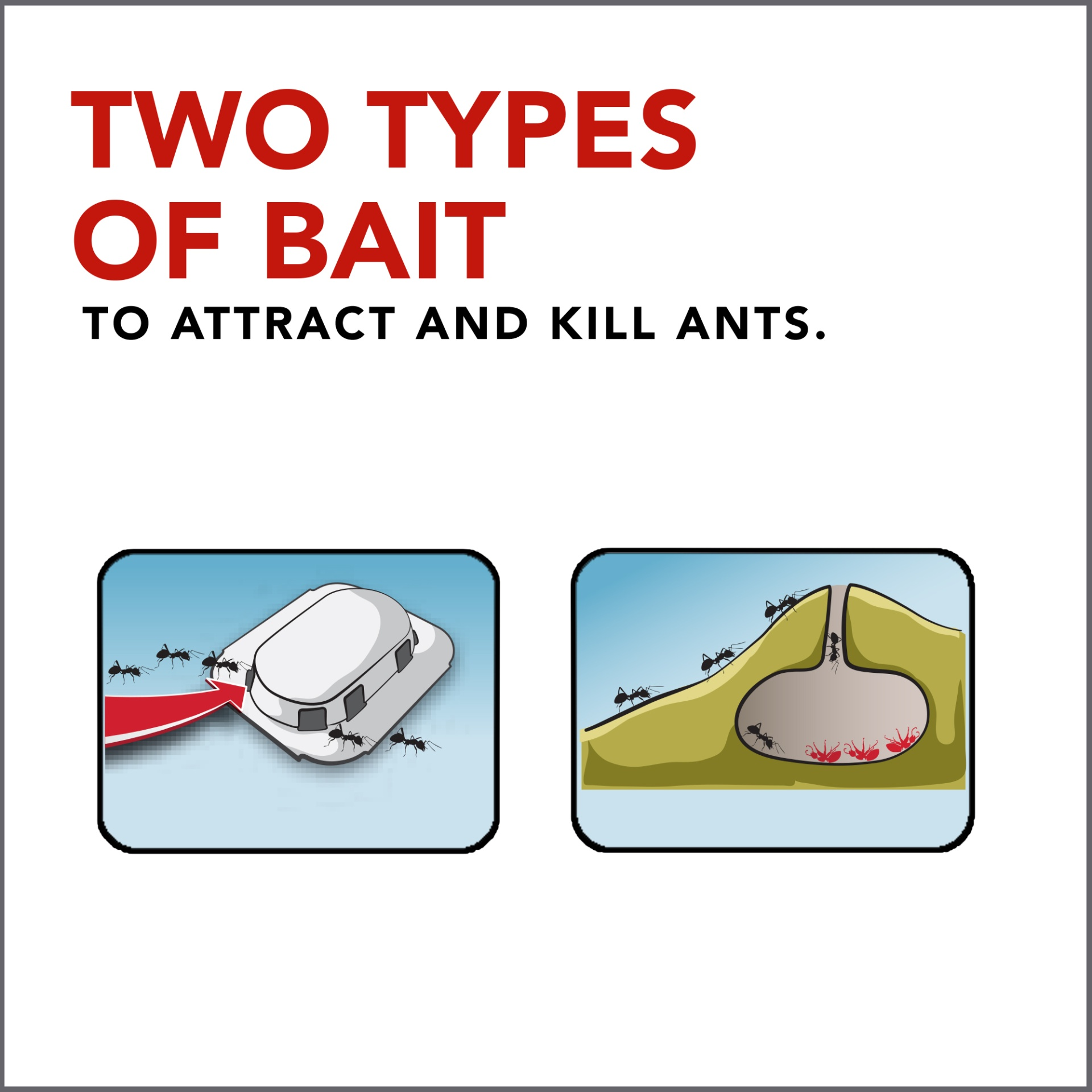 slide 5 of 7, Raid Double Control Ant Baits 4 Pack,